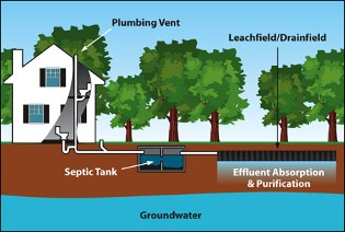 Typical Septic Components